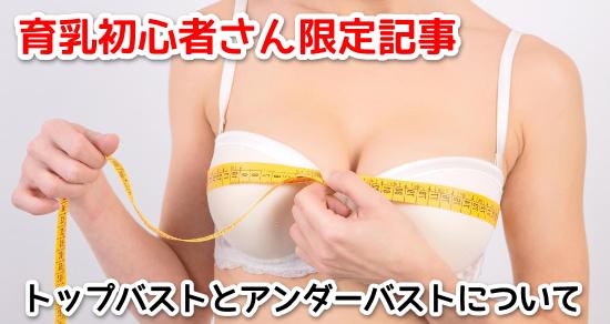 kisonokiso4
